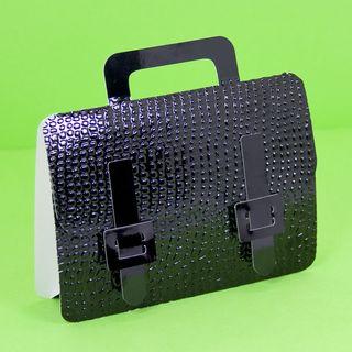 Briefcase_sara_2