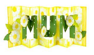 Mum_concertina_lainey_91-450