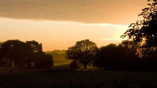 Sunrise_800